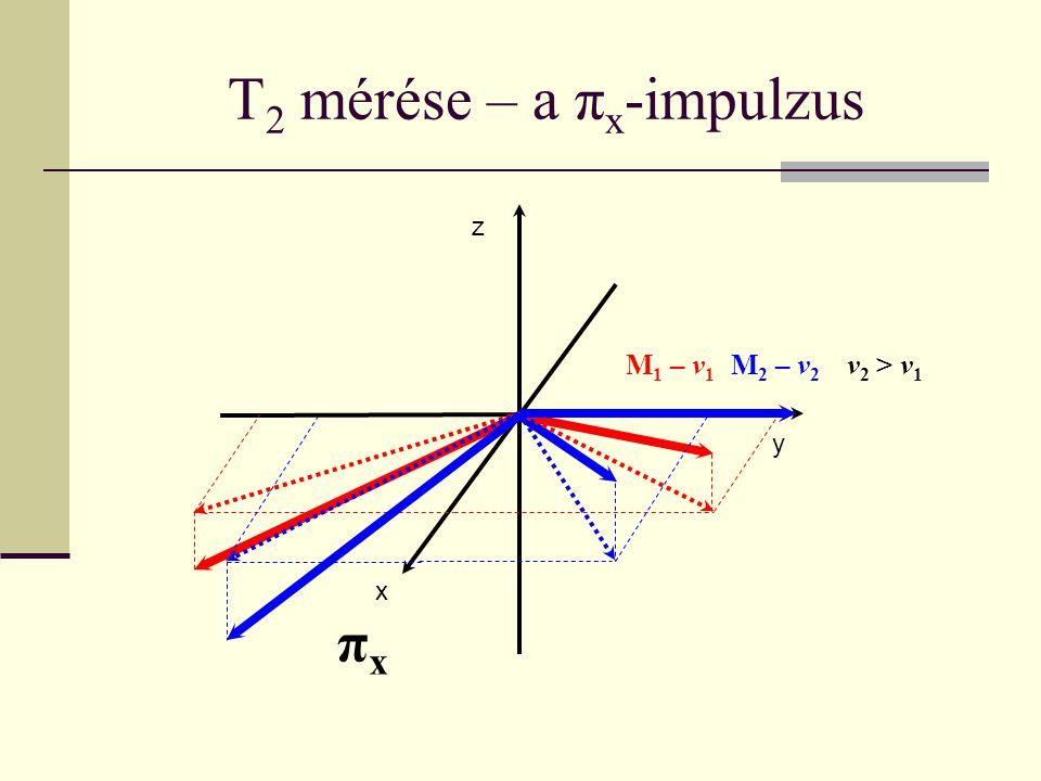 T 2 mérése – a π x -impulzus x y z M 1 – v 1 M 2 – v 2 v 2 > v 1 πxπx