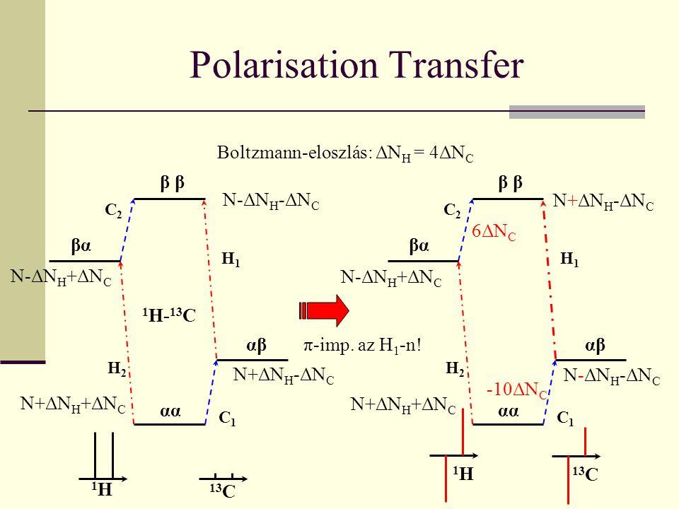 Polarisation Transfer 1 H- 13 C βα α αβαβ β C1C1 C2C2 H1H1 H2H2 Boltzmann-eloszlás: ΔN H = 4ΔN C N+ΔN H -ΔN C N-ΔN H +ΔN C N+ΔN H +ΔN C N-ΔN H -ΔN C 1