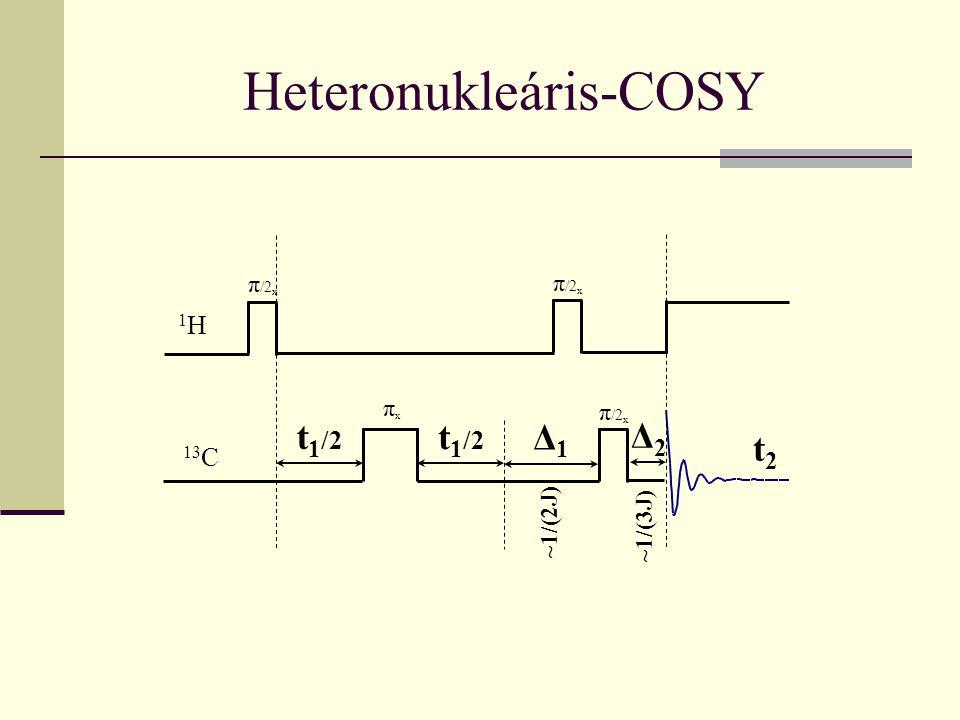 Heteronukleáris-COSY π /2 x t 1 /2 Δ1Δ1 1H1H πxπx 13 C t2t2 π /2 x t 1 /2 Δ2Δ2 ~1/(2J) ~1/(3J)
