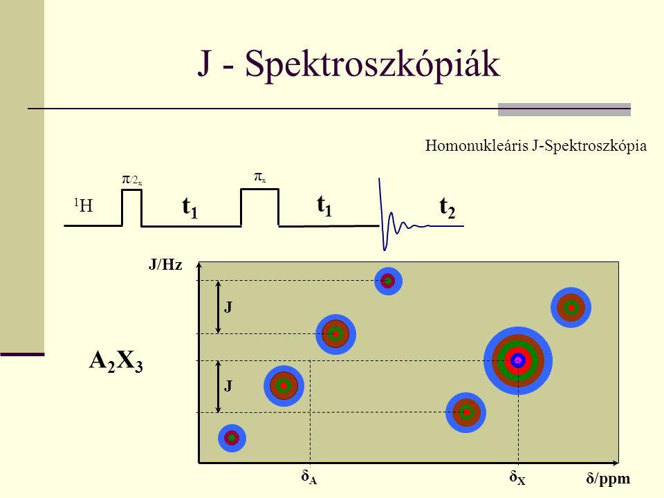 J - Spektroszkópiák Homonukleáris J-Spektroszkópia πxπx t2t2 t1t1 π /2 x t1t1 1H1H J/Hz δ/ppm A2X3A2X3 JJ δAδA δXδX