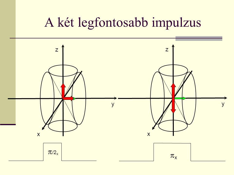 Relaxációs folyamatok Egy π/2-impulzus után a kialakult M xy komponens megszűnik, míg a megszűnt M z komponens visz- szaépül.