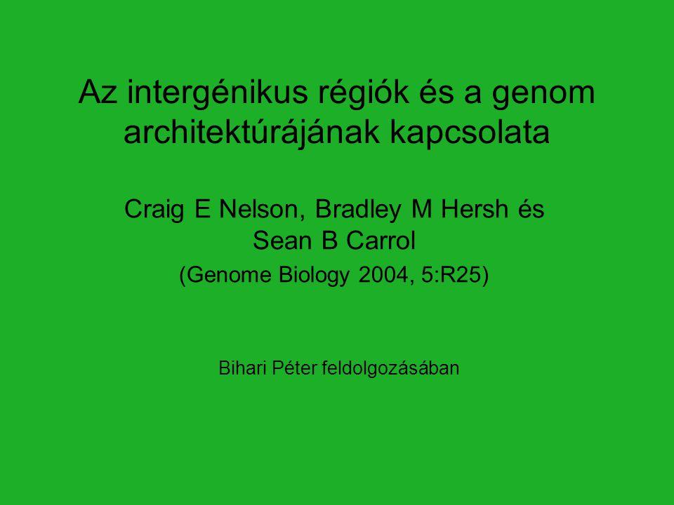 Bevezetés Valódi szövetes állatok – Eumetazoa Genomszerveződés: –Centromer, telomer –Eukromatin, heterokromatin –Gének és intergénikus szakaszok Nemkódoló régiók: –Génexpressziót szabályozó elemek + funkció nélküli DNS (közvetlenül nem szabályoz) Nehéz azonosítani.