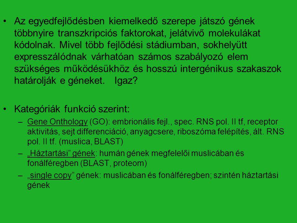 Általánosan előforduló: 4-5 kb Komplex funkció: D. melanogaster: 17-25 kb C. elegans: 8-11 kb