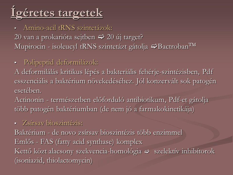 Ígéretes targetek Amino-acil tRNS szintetázok: Amino-acil tRNS szintetázok: 20 van a prokarióta sejtben  20 új target.
