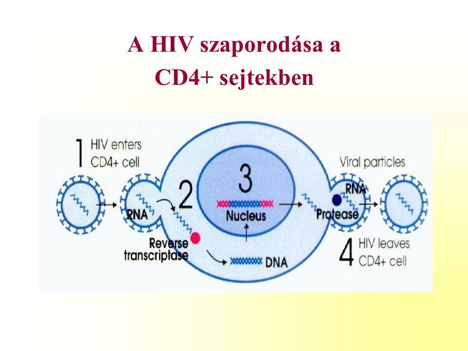 HIV fertőzött gyermekek kezelésének alappillérei P.