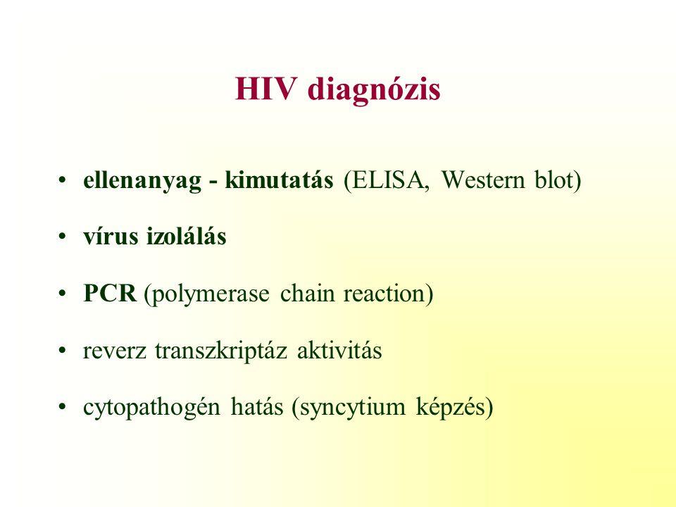 Gyermekkori HIV gondozása a Szent László Kórházban 1.
