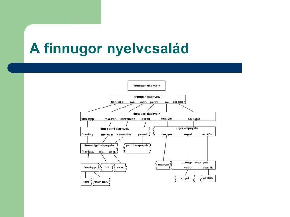 A finnugor nyelvcsalád