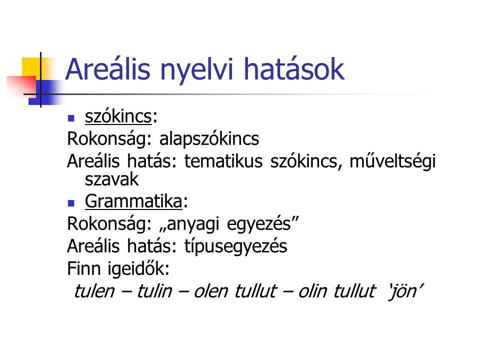 """Areális nyelvi hatások szókincs: Rokonság: alapszókincs Areális hatás: tematikus szókincs, műveltségi szavak Grammatika: Rokonság: """"anyagi egyezés"""" Ar"""