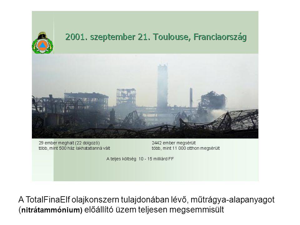 A TotalFinaElf olajkonszern tulajdonában lévő, műtrágya-alapanyagot ( nitrátammónium) előállító üzem teljesen megsemmisült