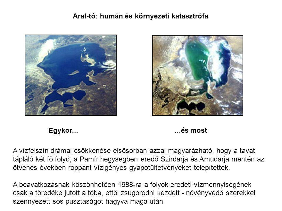 Aral-tó: humán és környezeti katasztrófa Egykor......és most A vízfelszín drámai csökkenése elsősorban azzal magyarázható, hogy a tavat tápláló két fő