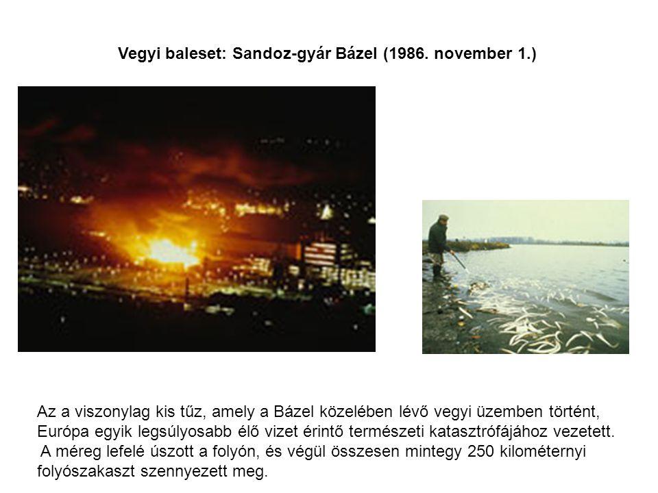Vegyi baleset: Sandoz-gyár Bázel (1986. november 1.) Az a viszonylag kis tűz, amely a Bázel közelében lévő vegyi üzemben történt, Európa egyik legsúly