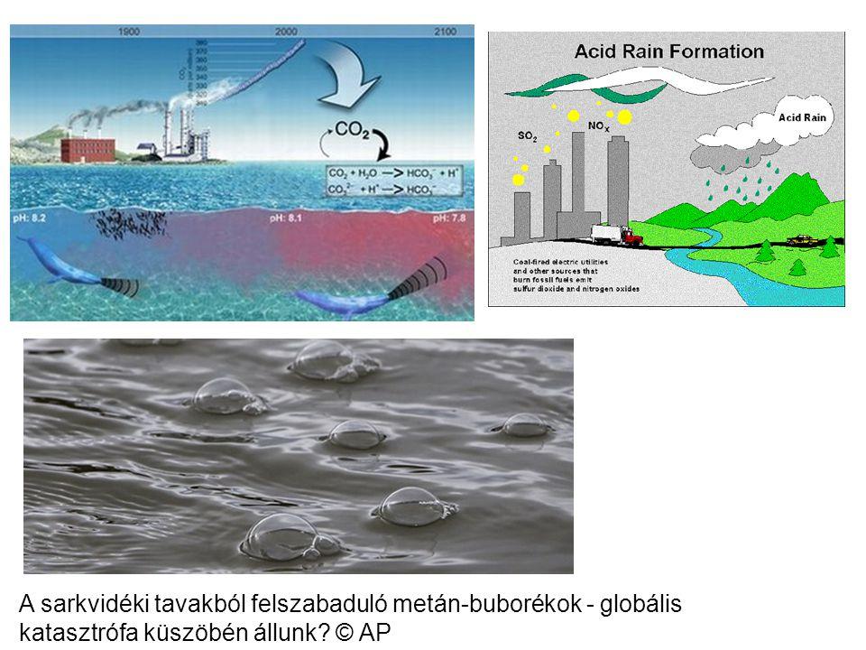 A sarkvidéki tavakból felszabaduló metán-buborékok - globális katasztrófa küszöbén állunk? © AP