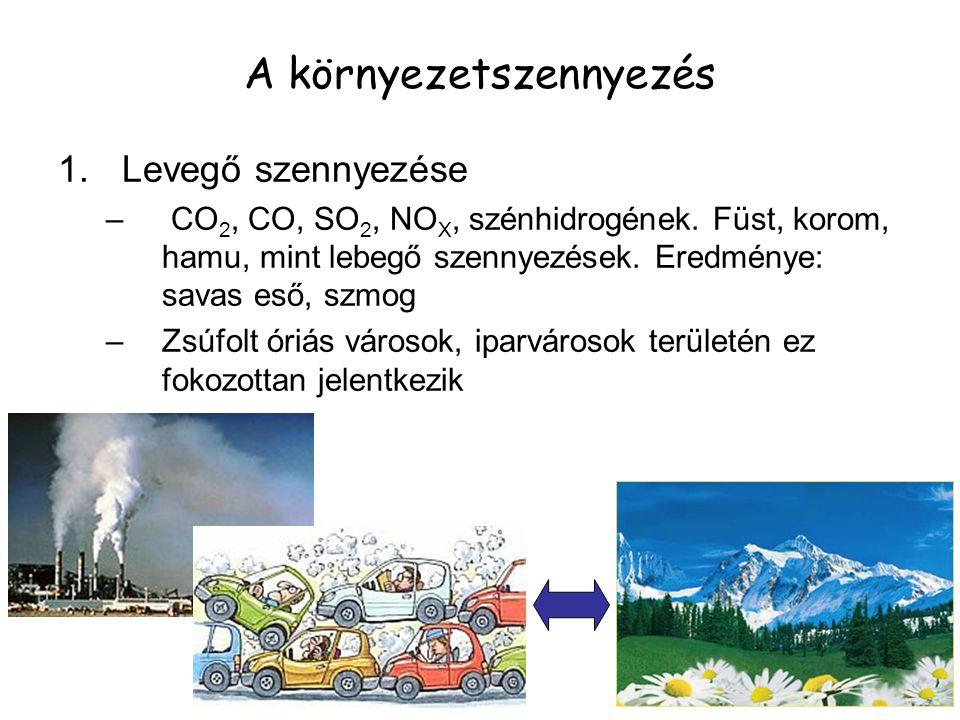 1.Levegő szennyezése – CO 2, CO, SO 2, NO X, szénhidrogének. Füst, korom, hamu, mint lebegő szennyezések. Eredménye: savas eső, szmog –Zsúfolt óriás v