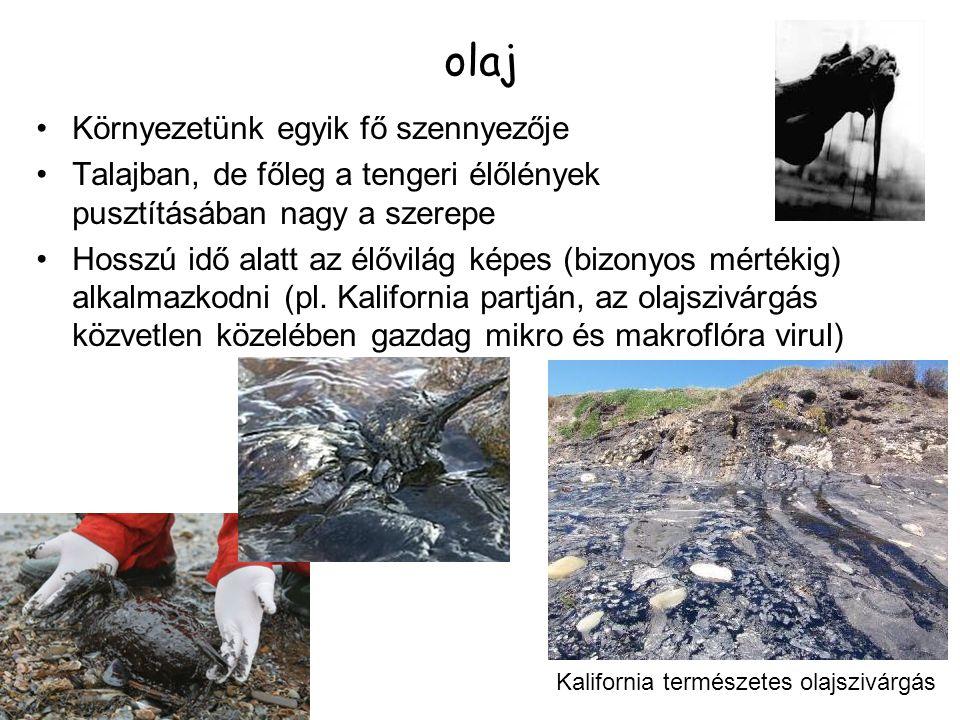 olaj Környezetünk egyik fő szennyezője Talajban, de főleg a tengeri élőlények pusztításában nagy a szerepe Hosszú idő alatt az élővilág képes (bizonyo