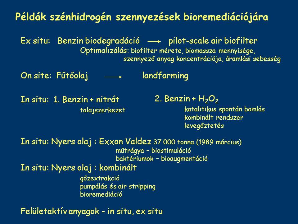 Példák szénhidrogén szennyezések bioremediációjára Ex situ: Benzin biodegradáció pilot-scale air biofilter Optimalizálás: biofilter mérete, biomassza