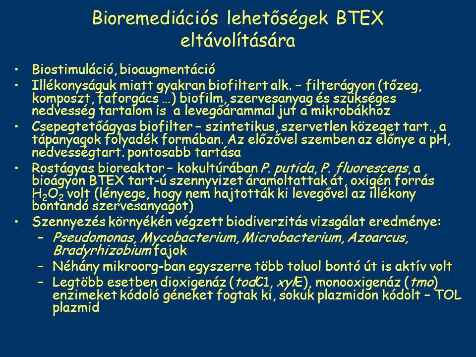 Bioremediációs lehetőségek BTEX eltávolítására Biostimuláció, bioaugmentáció Illékonyságuk miatt gyakran biofiltert alk. – filterágyon (tőzeg, komposz