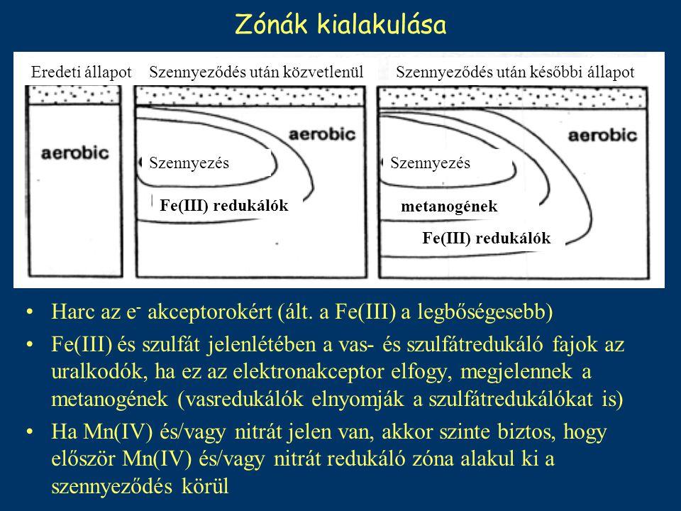 Zónák kialakulása Harc az e - akceptorokért (ált. a Fe(III) a legbőségesebb) Fe(III) és szulfát jelenlétében a vas- és szulfátredukáló fajok az uralko