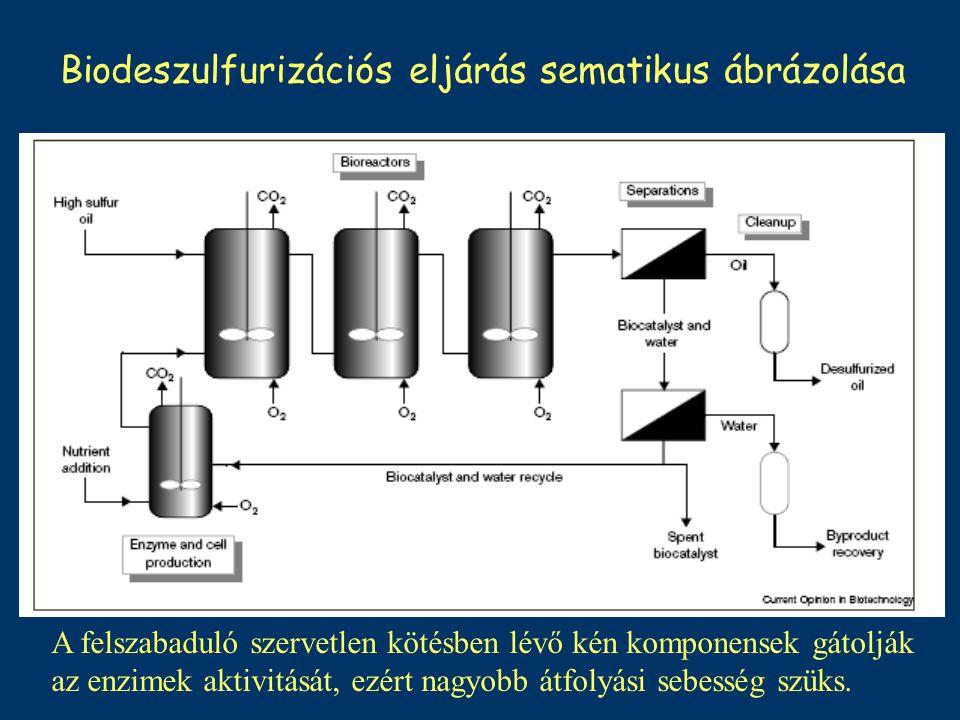 Biodeszulfurizációs eljárás sematikus ábrázolása A felszabaduló szervetlen kötésben lévő kén komponensek gátolják az enzimek aktivitását, ezért nagyob
