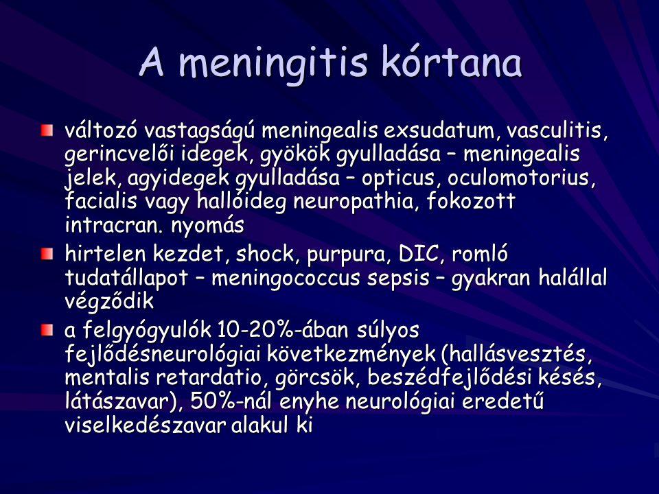 A meningitis kórtana változó vastagságú meningealis exsudatum, vasculitis, gerincvelői idegek, gyökök gyulladása – meningealis jelek, agyidegek gyulla