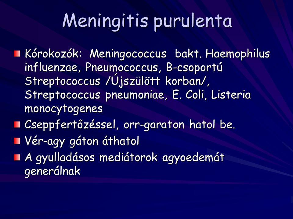 Meningitis purulenta Kórokozók: Meningococcus bakt. Haemophilus influenzae, Pneumococcus, B-csoportú Streptococcus /Újszülött korban/, Streptococcus p