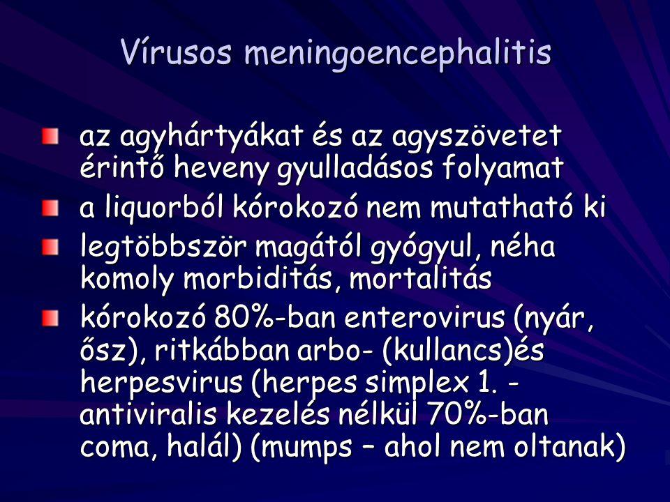 Vírusos meningoencephalitis az agyhártyákat és az agyszövetet érintő heveny gyulladásos folyamat a liquorból kórokozó nem mutatható ki legtöbbször mag
