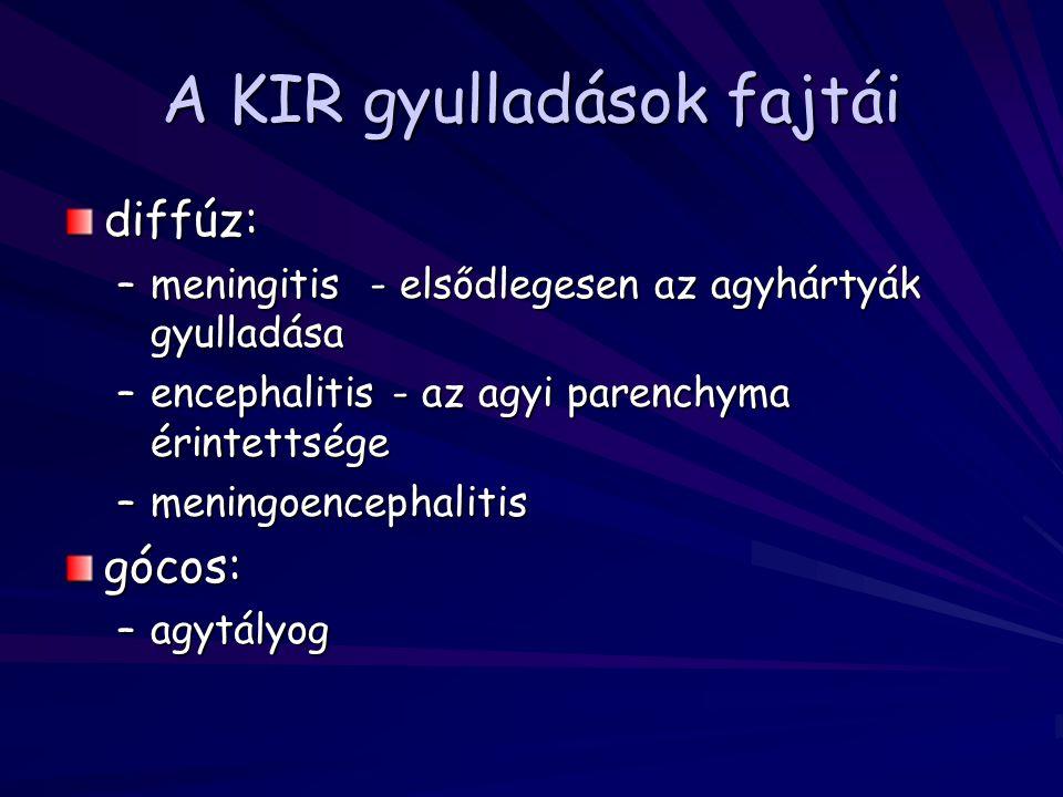 A KIR gyulladások fajtái diffúz: –meningitis - elsődlegesen az agyhártyák gyulladása –encephalitis - az agyi parenchyma érintettsége –meningoencephali