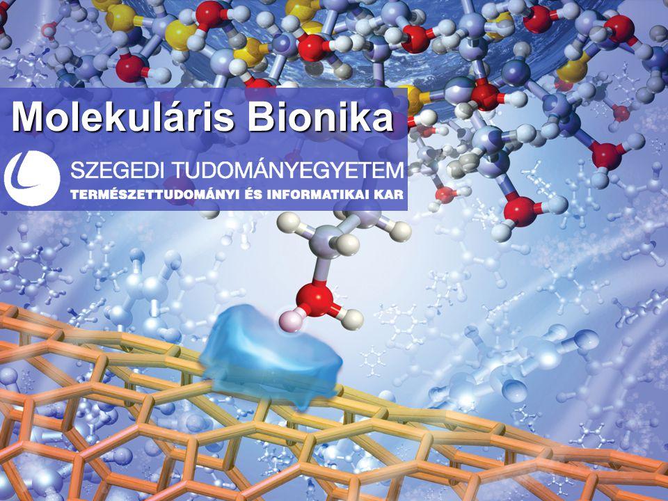 Molekuláris Bionika
