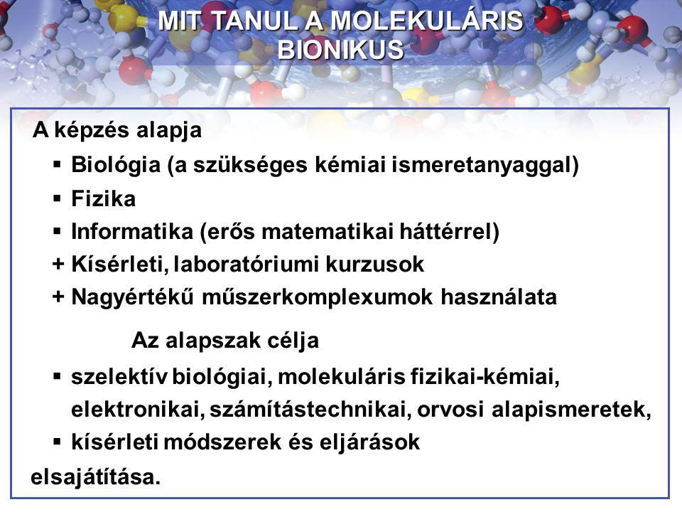 A képzés alapja  Biológia (a szükséges kémiai ismeretanyaggal)  Fizika  Informatika (erős matematikai háttérrel) + Kísérleti, laboratóriumi kurzuso