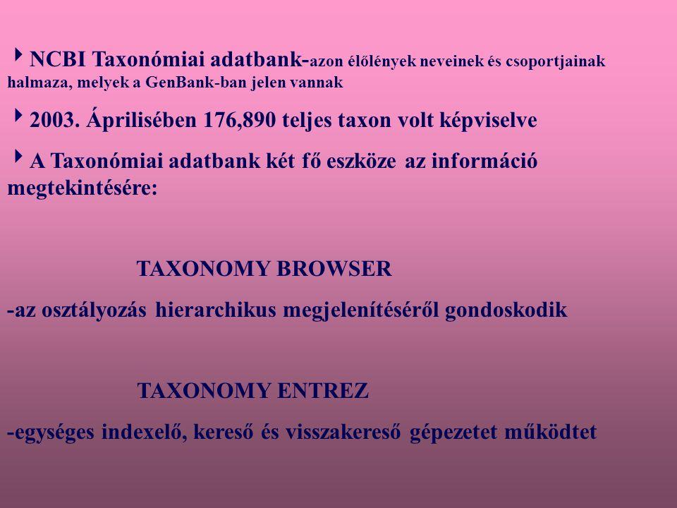 A Taxonómiai Adatbázis: TAXON  A Taxonomy Editor nevezetű software tartja fenn az adatbázist  Mindegyik bejegyzés egy taxon ( node =csomópont)  A hierarchia csúcsán a gyökér csomópont ( root node ) található  A leszármazási vonal ( lineage ) az elérési út a gyökér csomóponttól bármelyik taxonhoz  A subtree a csomópontok gyűjteménye bármelyik részleges taxon alatt  Mindegyik taxonnak egyedi azonosítója (taxid) van, mely sorrendileg van hozzárendelve.