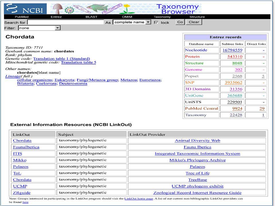 Különböző módokon kereshetünk nevekre a taxonómiai adatbázisban:  Teljes név (Complete name)- alapértelmezésénél fogva a TaxBrowser erre keres, ha egy szakkifejezést a keresőbe gépelnek.