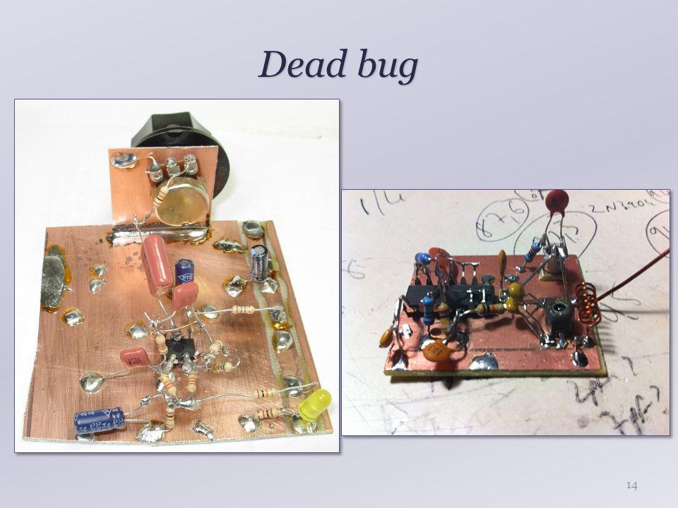 Dead bug 14