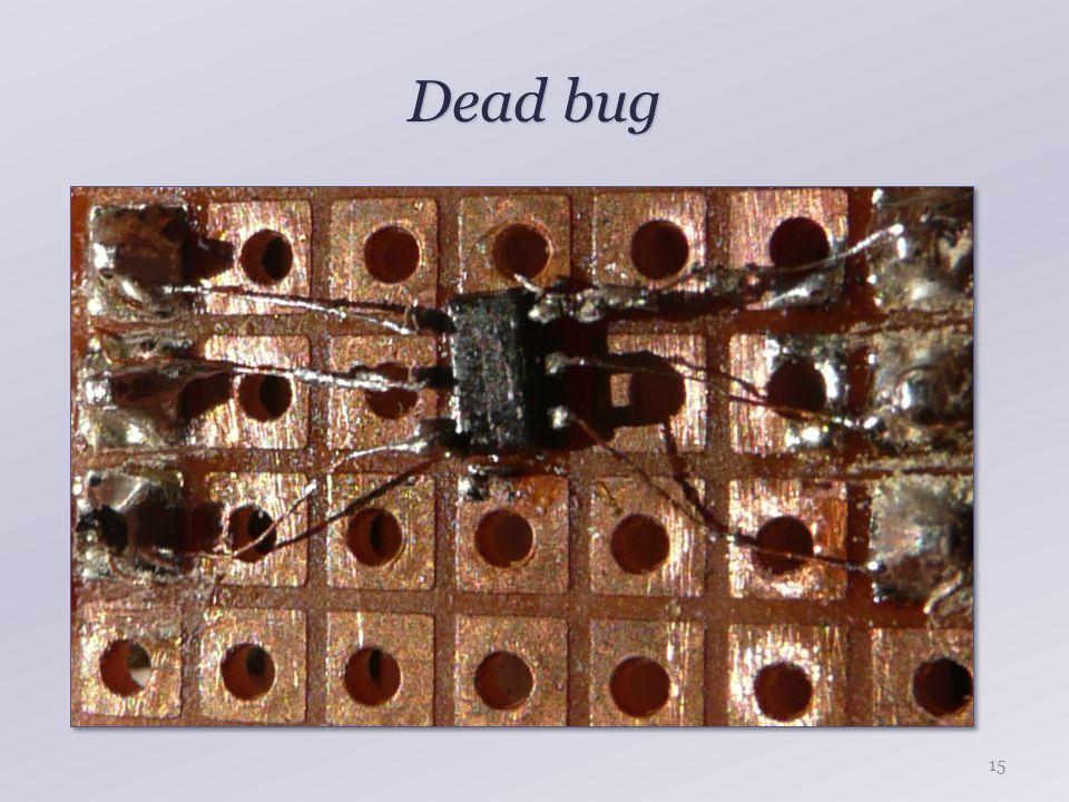 Dead bug 15