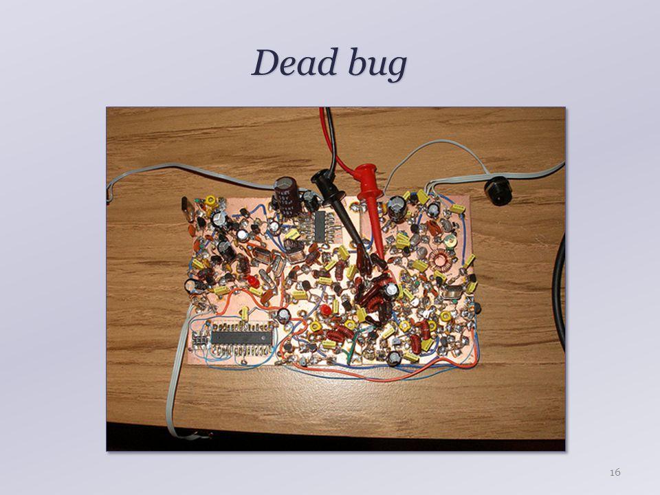 Dead bug 16