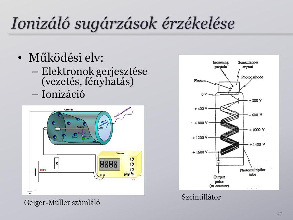 Ionizáló sugárzások érzékelése Működési elv: – Elektronok gerjesztése (vezetés, fényhatás) – Ionizáció 47 Geiger-Müller számláló Szcintillátor