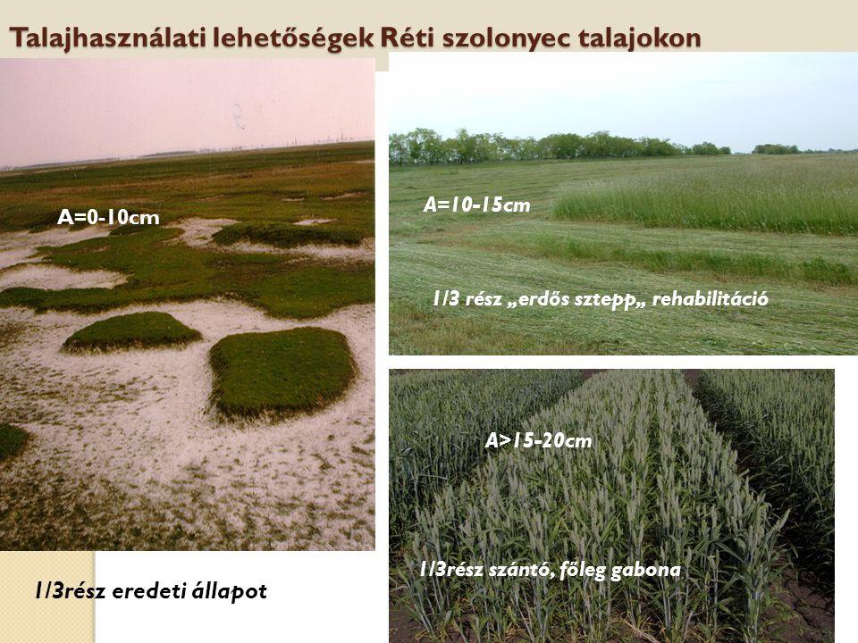 """HEFOP 3.3.1. Talajhasználati lehetőségek Réti szolonyec talajokon 1/3rész eredeti állapot 1/3 rész """"erdős sztepp"""" rehabilitáció 1/3rész szántó, főleg"""