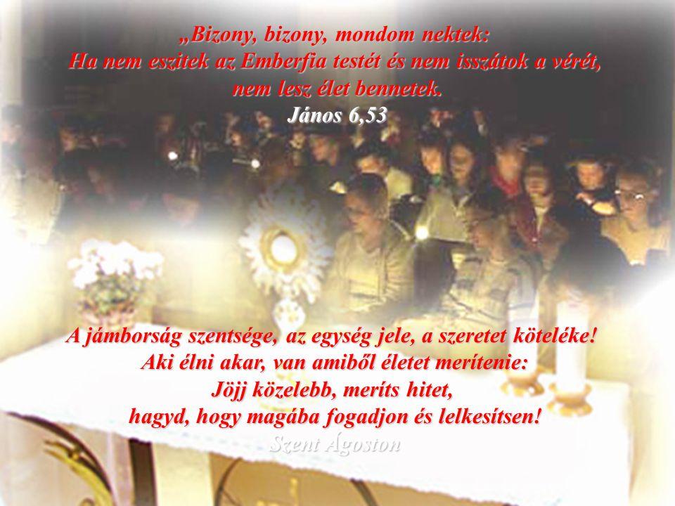 """""""Minden pillanatban áldalak ó mennyei élő kenyér, dicsőséges szentség. (Liguori szent Alfonz) Antonio Barone www.micromedia.unisal.iwww.micromedia.unisal.i Ro."""