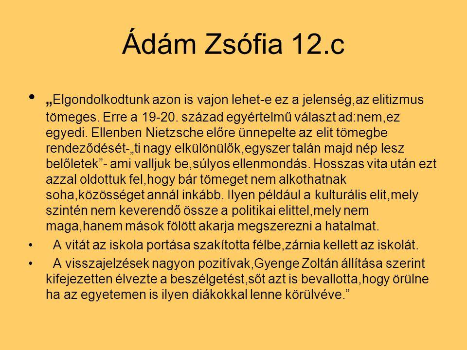 """Ádám Zsófia 12.c """" Elgondolkodtunk azon is vajon lehet-e ez a jelenség,az elitizmus tömeges. Erre a 19-20. század egyértelmű választ ad:nem,ez egyedi."""