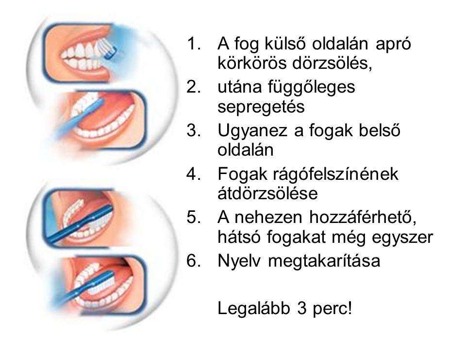 1.A fog külső oldalán apró körkörös dörzsölés, 2.utána függőleges sepregetés 3.Ugyanez a fogak belső oldalán 4.Fogak rágófelszínének átdörzsölése 5.A nehezen hozzáférhető, hátsó fogakat még egyszer 6.Nyelv megtakarítása Legalább 3 perc!