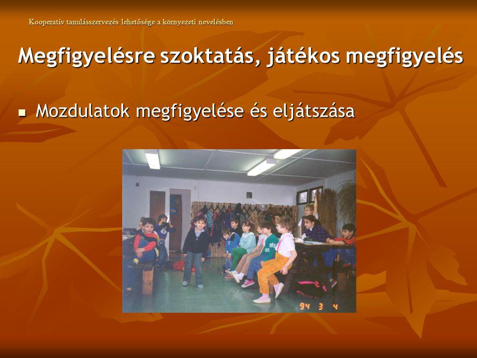 Kooperatív tanulásszervezés lehetősége a környezeti nevelésben Megfigyelésre szoktatás, játékos megfigyelés Mozdulatok megfigyelése és eljátszása Mozd