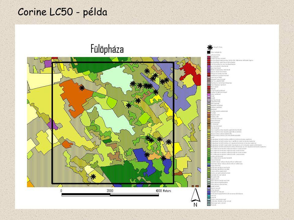 Felhasznált táji adatforrások Kiskun LTERm mintaterület-hálózat aktuális térképei Kiskunságra kifejlesztett rendszer, kevert élőhelyek is jelölve vannak kategóriák: 2 szint, 34 db, természetes élőhelyek részletesen Felbontás: 5 m vonalas vagy 0,25 ha (50mx50m) folt a legkisebb egység Alapév: 2005 Problémák: túl részletes, légifotó-interpretálási nehézségek, terepismeretet igényel,