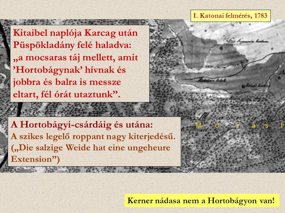 """H o r t o b a g y M o r a s t I. Katonai felmérés, 1783 Kitaibel naplója Karcag után Püspökladány felé haladva: """"a mocsaras táj mellett, amit 'Hortobá"""