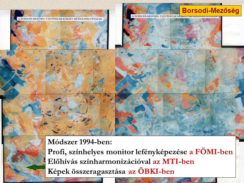 Borsodi-Mezőség 5 km Módszer 1994-ben: Profi, színhelyes monitor lefényképezése a FÖMI-ben Előhívás színharmonizációval az MTI-ben Képek összeragasztá