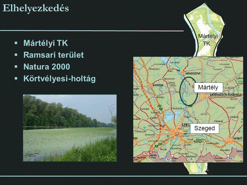  Mártélyi TK  Ramsari terület  Natura 2000  Körtvélyesi-holtág Elhelyezkedés Szeged Mártély