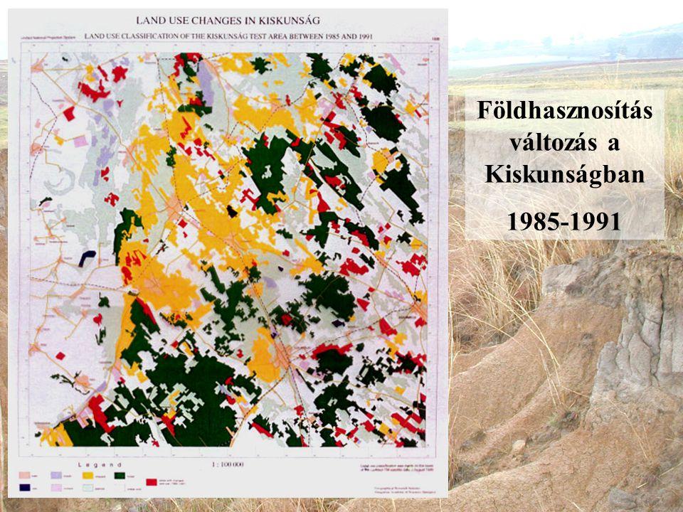 Földhasznosítás változás a Kiskunságban 1985-1991