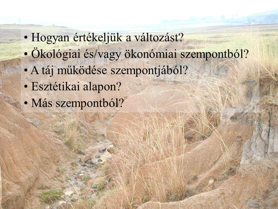 Hogyan értékeljük a változást? Ökológiai és/vagy ökonómiai szempontból? A táj működése szempontjából? Esztétikai alapon? Más szempontból?