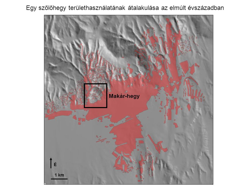 1 km É Egy szőlőhegy területhasználatának átalakulása az elmúlt évszázadban Makár-hegy