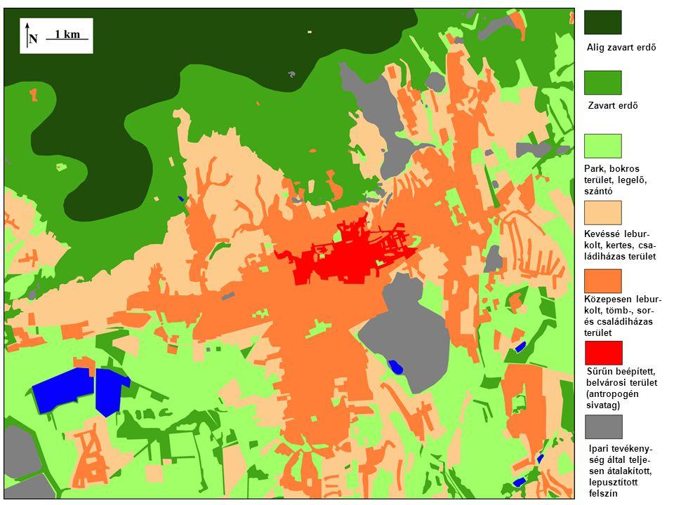Alig zavart erdő Zavart erdő Park, bokros terület, legelő, szántó Kevéssé lebur- kolt, kertes, csa- ládiházas terület Közepesen lebur- kolt, tömb-, sor- és családiházas terület Sűrűn beépített, belvárosi terület (antropogén sivatag) Ipari tevékeny- ség által telje- sen átalakított, lepusztított felszín