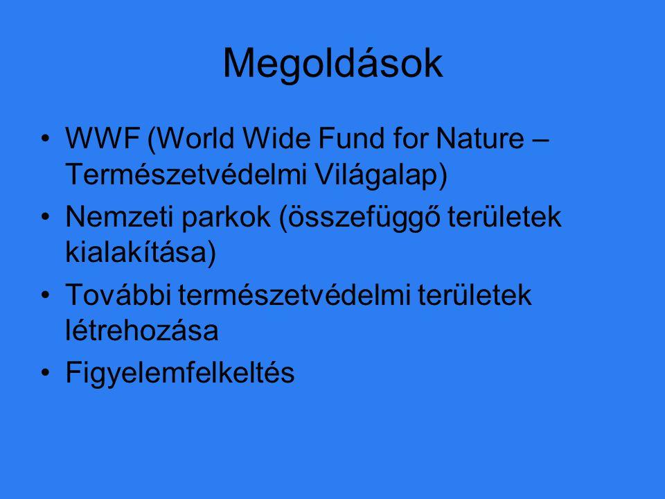 Megoldások WWF (World Wide Fund for Nature – Természetvédelmi Világalap) Nemzeti parkok (összefüggő területek kialakítása) További természetvédelmi te