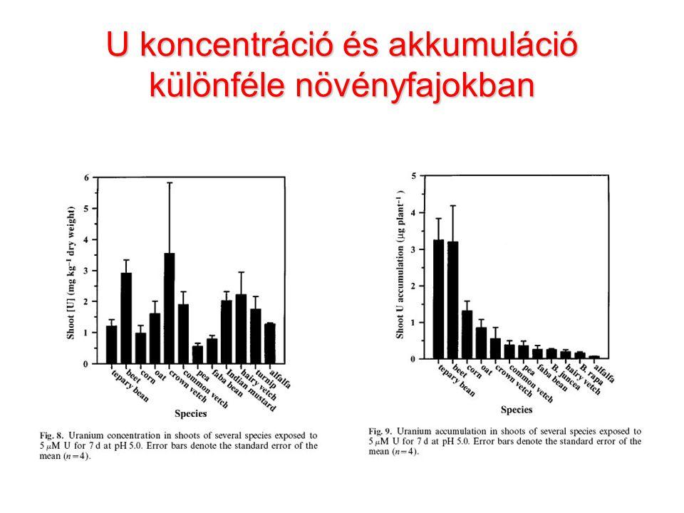 U koncentráció és akkumuláció különféle növényfajokban