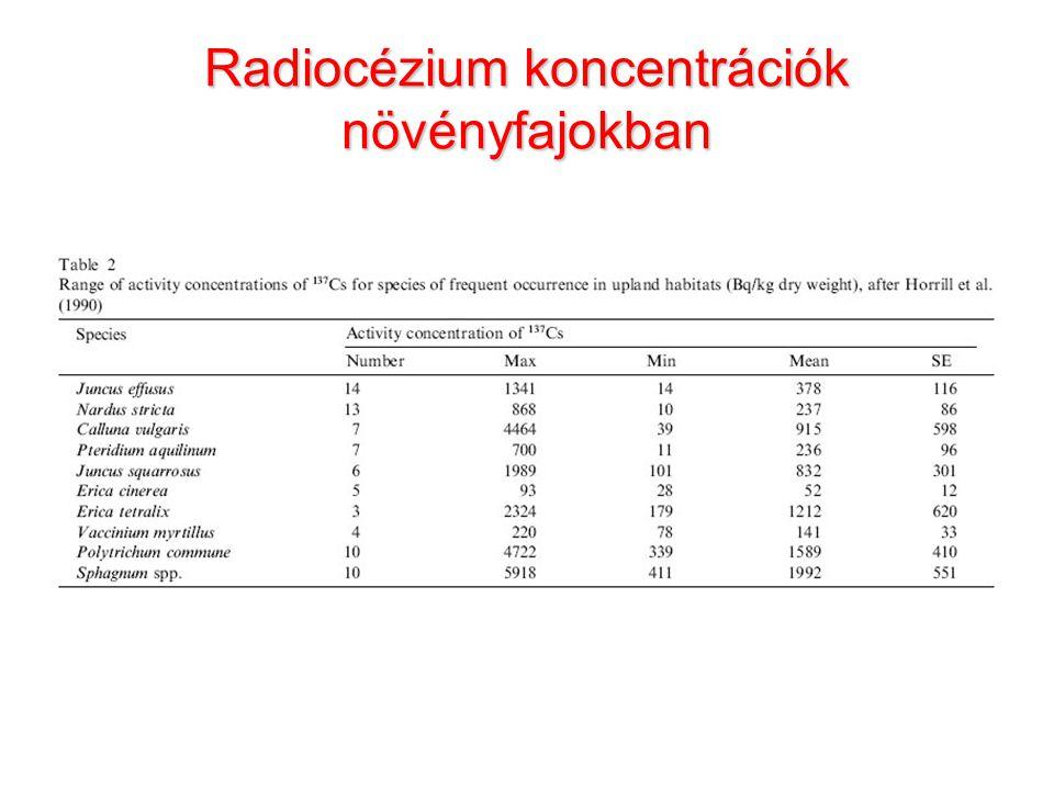 Radiocézium koncentrációk növényfajokban